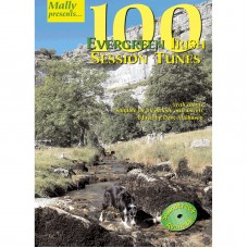 100 Evergreen Irish Session Tunes Book Only by Dave Mallinson